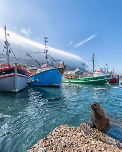 Port-Cape-Town-online-travel-5.jpg