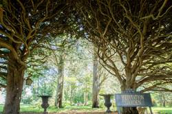 wainwright retreats