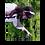 Thumbnail: りちあ ブロマイド&チェキセット