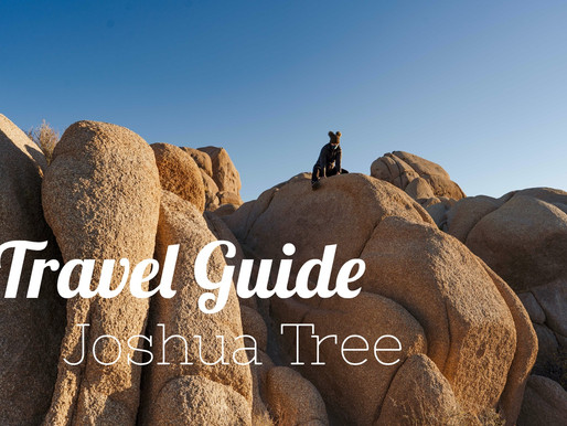 Travel Guide: Joshua Tree