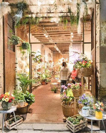 Boutique botanical store front with beautiful flowers and plants in the gothic quarter barcelona spain