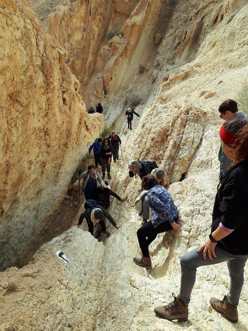מאירות שביל ישראל עולות בסנפיר הגדול