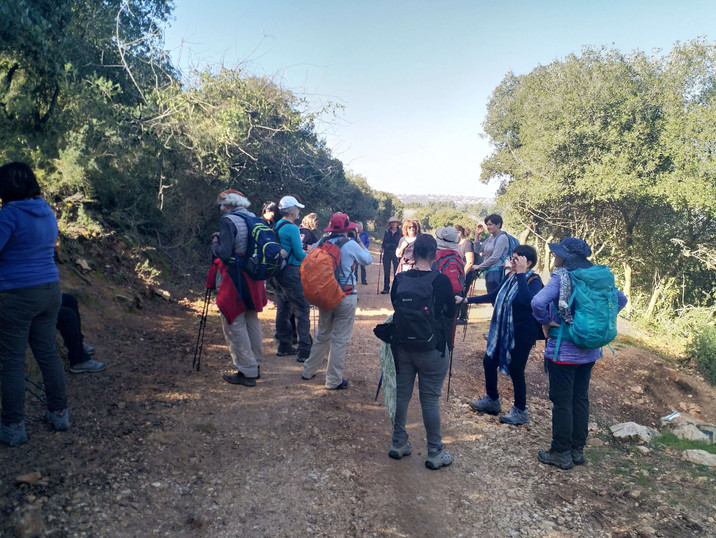מאירות שביל ישראל מסלול 24 בהר עצמון
