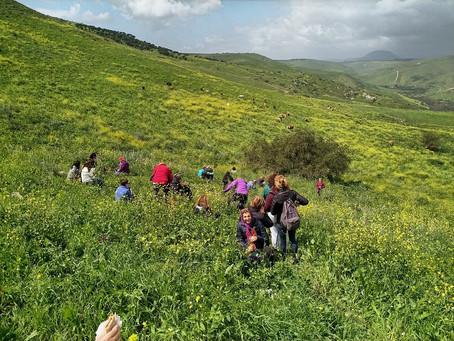 מאירות שביל ישראל במבצר כוכב הירדן ונחל תבור מסלול 46