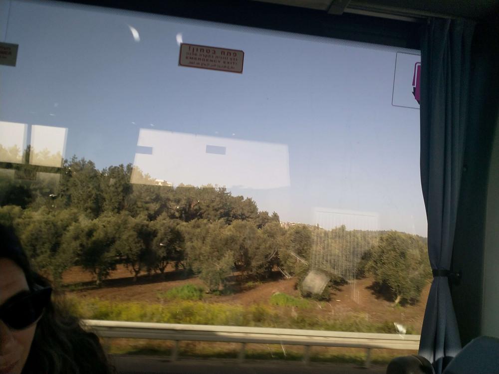מאירות שביל ישראל בדרך לגליל התחתון