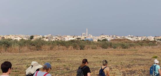 מאירות שביל ישראל מסלול 31