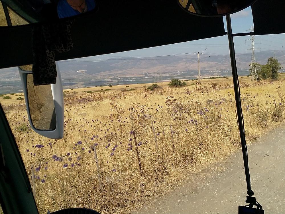 מאירות שביל ישראל נשים מטיילות יחד בג'ילבון