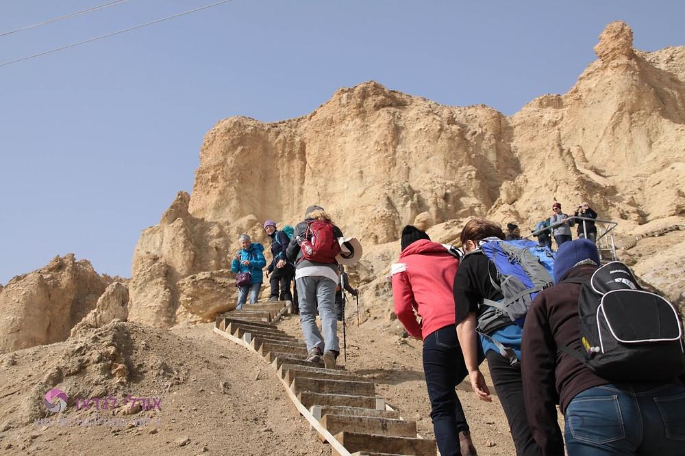 מאירות שביל ישראל עולות במעלה המדרגות בהר סדום