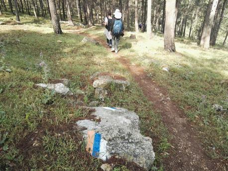 מאירות שביל ישראל לאורך השביל מסלול 18