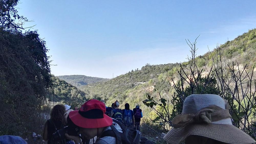 מאירות שביל ישראל בהרי הכרמל