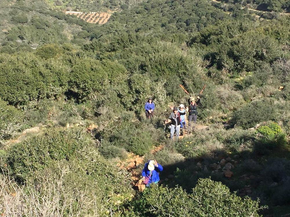 מאירות שביל ישראל עולות את הר עצמון