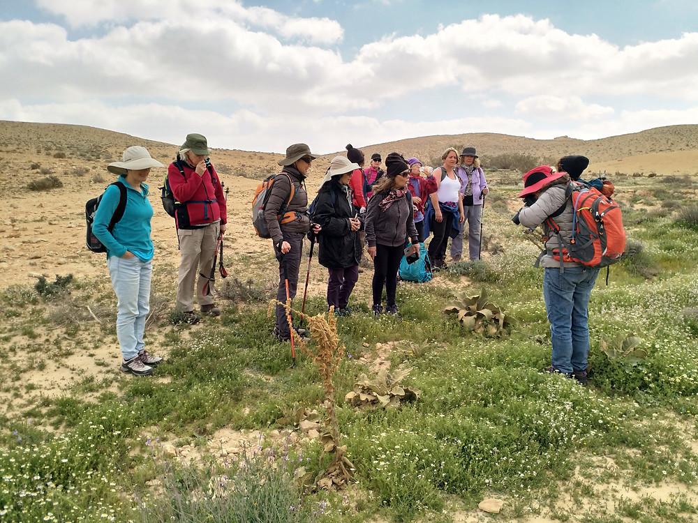 מאירות שביל ישראל במכתש רמון נחל ניצנה