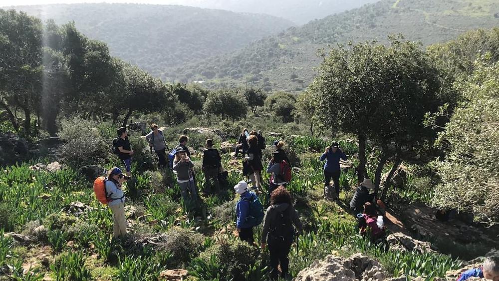 מאירות שביל ישראל בנחל יודפת