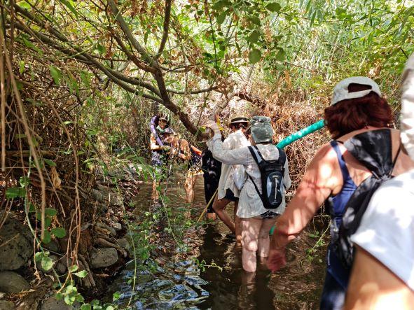 מאירות שביל ישראל נשים מטיילות יחד בזאכי