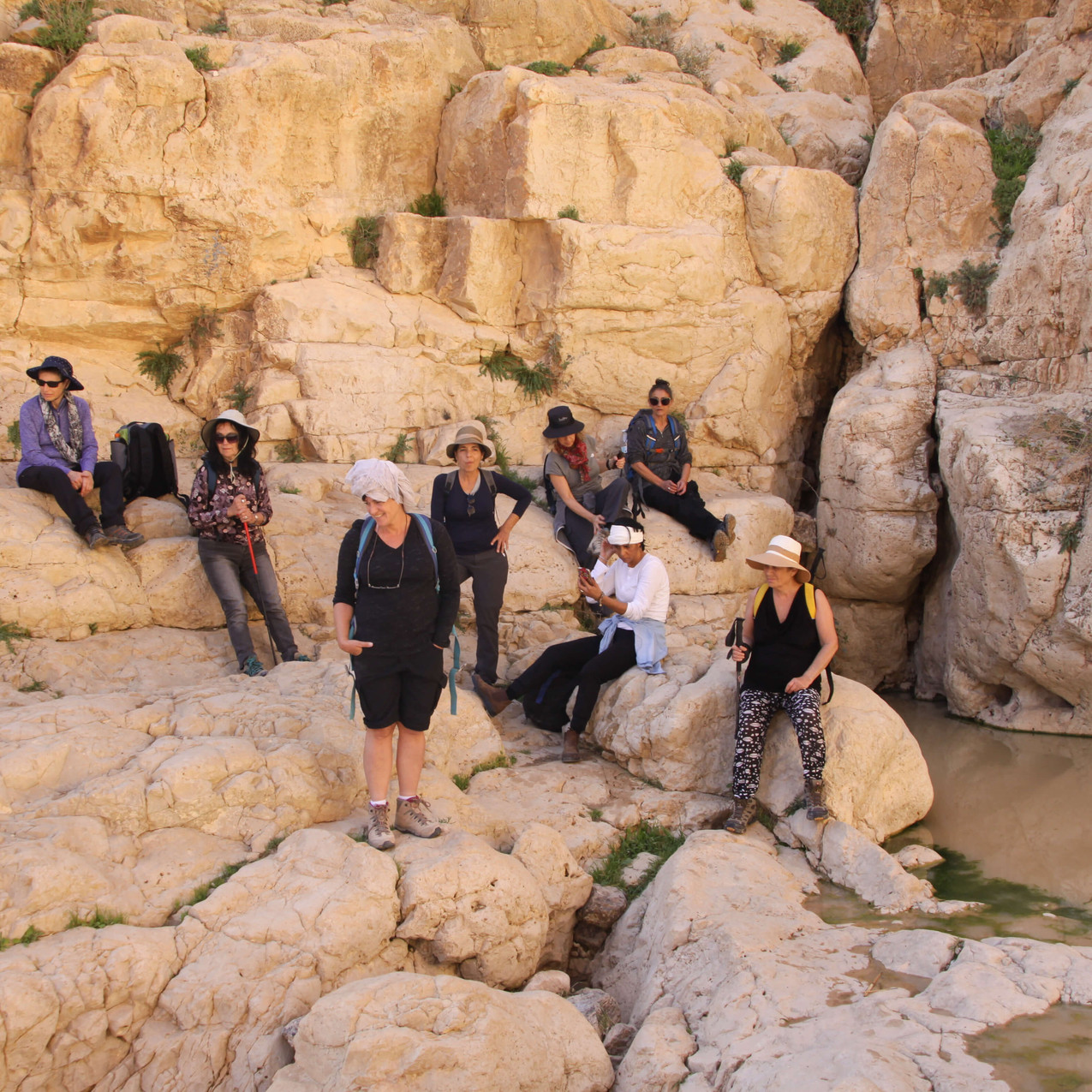 מאירות שביל ישראל בנחל קינה בגב הגדול