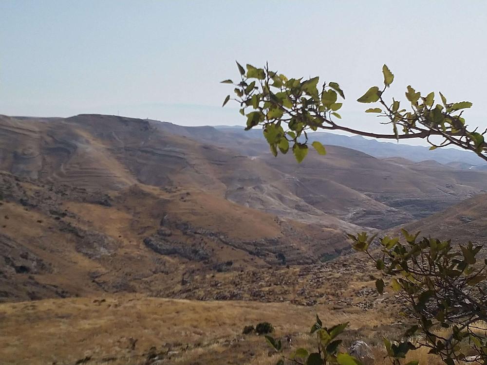 מאירות שביל ישראל נשים מטיילות יחד בשמורת נחל פרת