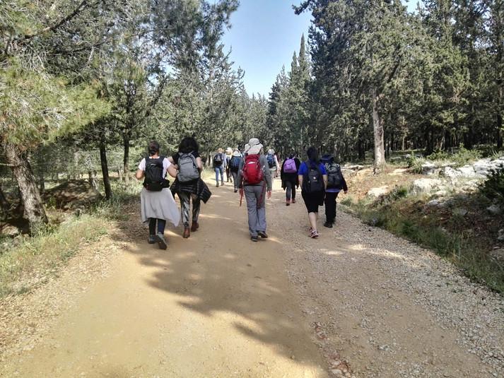 מאירות שביל ישרל מאלון הגליל דרך חורשת ברושים הלכנו לאורך שביל ישראל