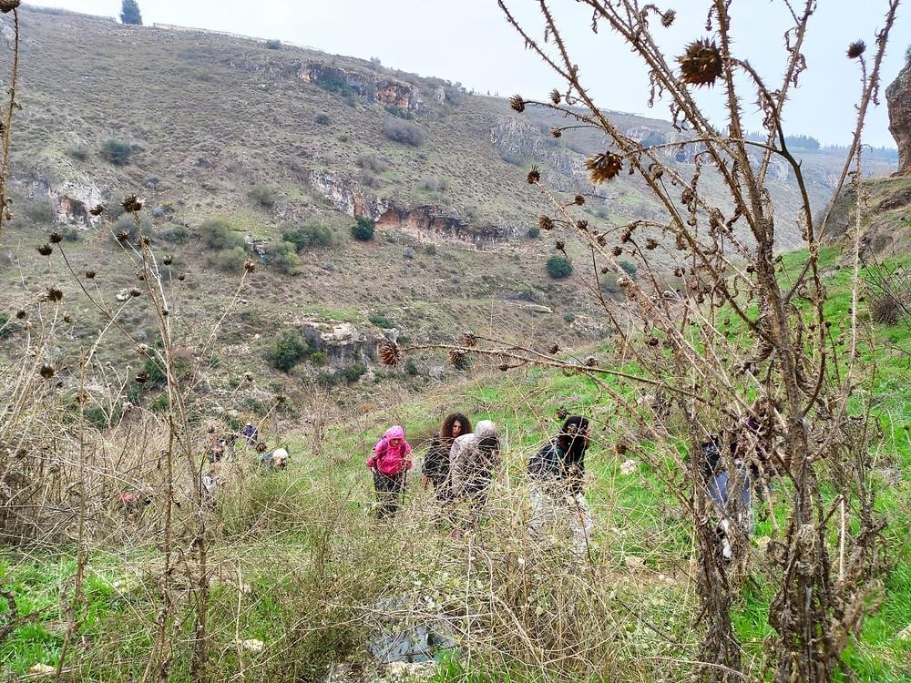 מאירות שביל ישראל נשים מטיילות יחד בנחל אביב  מסלול 42