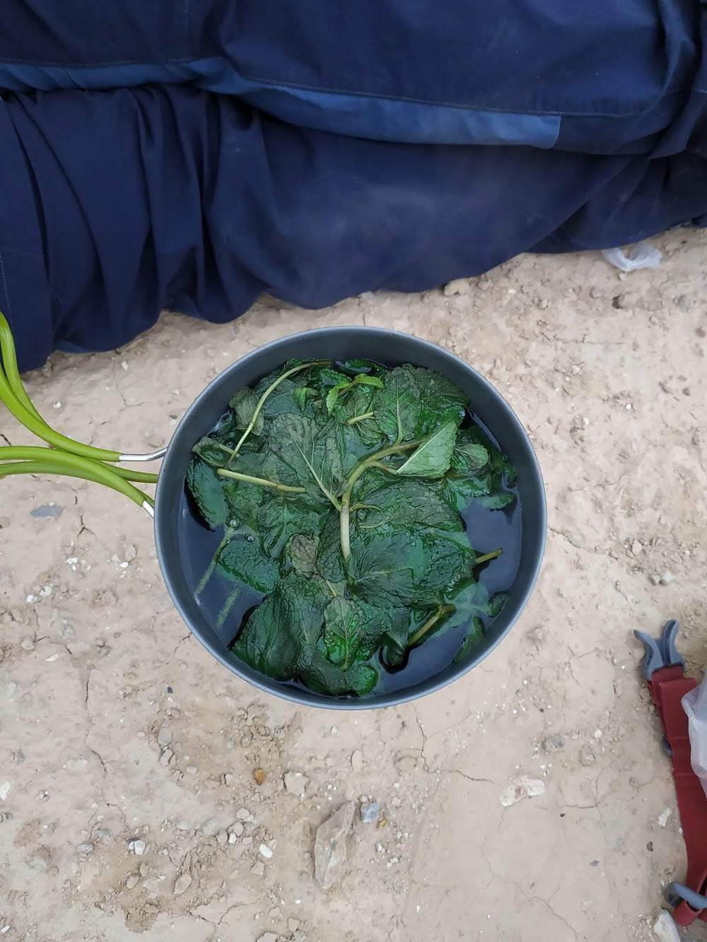 מאירות שביל ישראל מכינות תה במכתש הגדול