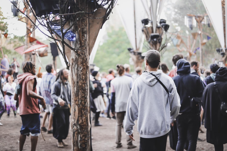 Wurzel Festival