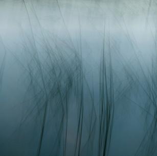 326 ~ river dance.jpg