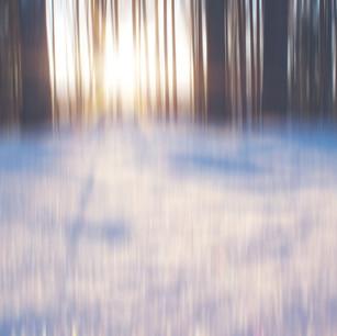 finland winter woods blur-2.jpg