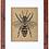 Thumbnail: HONEY BEE