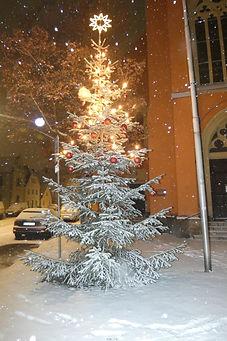 verschneiter Weihnachtsbaum.jpg