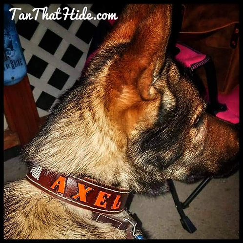 Premium Leather Dog Collar Stitched & Painted