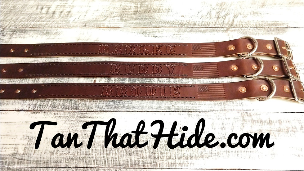 Basic Leather Dog Collar (No Stitching or Paint)