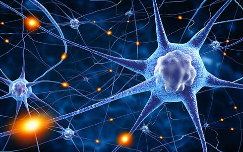 Neuroplasticity_drspar.png-1080x675.jpg