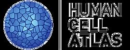 Human Cell Atlas Logo
