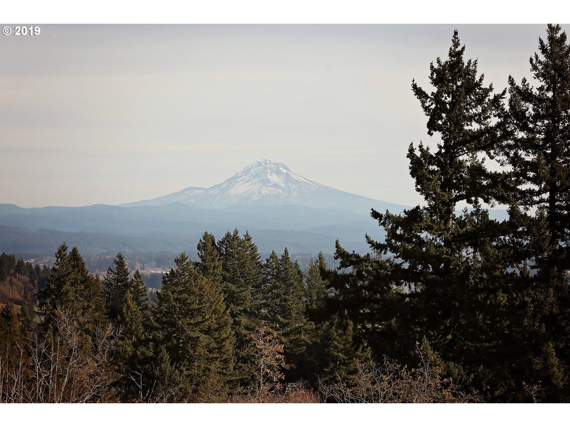 View - Mountain