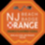 silver_pin_orange_logo_new.png