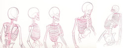 assignment-skeleton