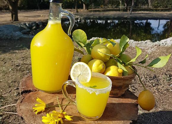 Limon Konsantre (1L)