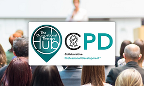 Hub CPD page (wide).png