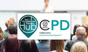 Hub CPD page.png