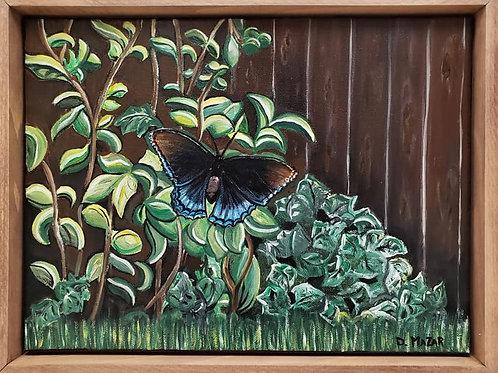 The Garden Butterfly