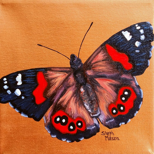 Oil Painting - Red Admiral - Nov 1