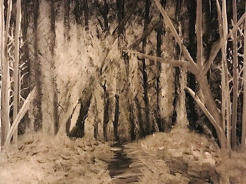 Winter Woods at Night