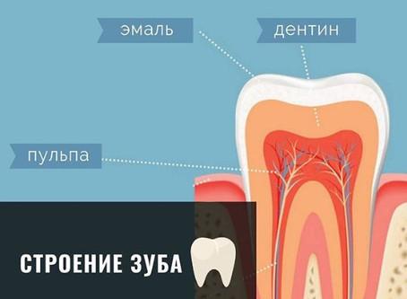 Почему нужно посещать стоматолога, даже когда ничего не беспокоит? Часть 1.