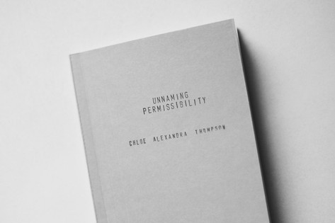 Unnaming Permissibility Publication Studios PDX x Blankstairs 2015