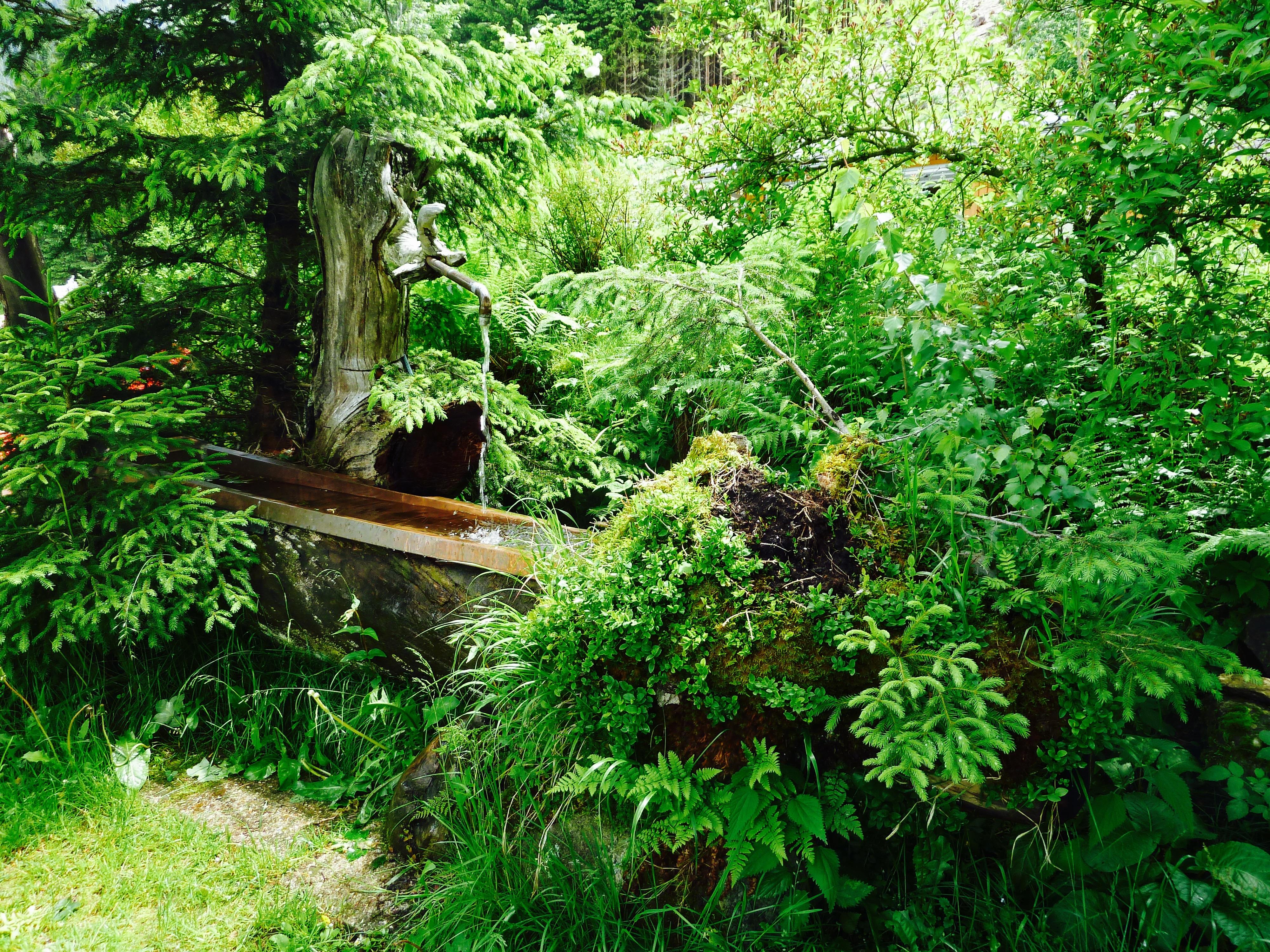 Garten_Brunnen