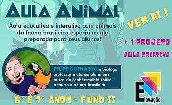 aula animal.jpg