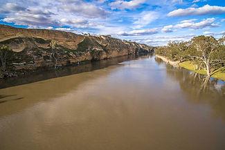Murray-River.jpg