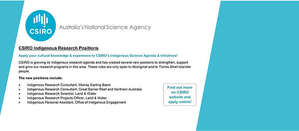 CSIRO-Indigenous-Positions-Ad---Banner[9029].jpg