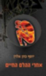 עטיפת הספר - אחרי ההלם החיים - יוסף כהן