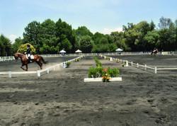 Concurso Nodin 2009-017