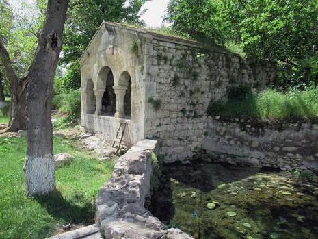DREAM: Ancient Looking Garden